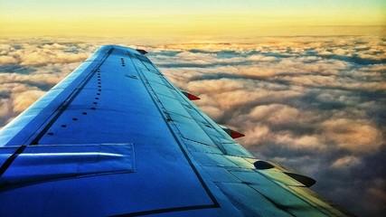 Foto auf Gartenposter Gelb Schwefelsäure Airplane Flying Over Landscape Against Sky