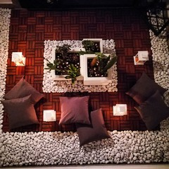 Fototapeta High Angle View Of Cushions By Potted Plants At Home obraz