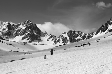 Wall Mural - Dog and trekker on snowy plateau in high mountains and sky with clouds