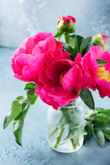 Fototapete - Peony Madame Butterfly