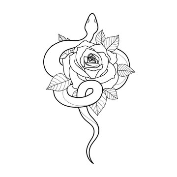 Hand drawing outline snake with rose. Tattoo snake for Henna drawing and tattoo template. Vector illustration