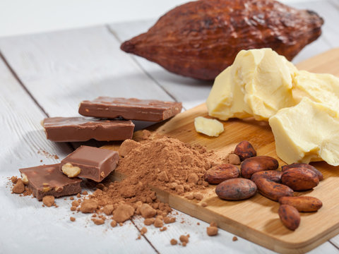 Pieces of natural cocoa butter, bar of milk chocolate, cocoa powder,