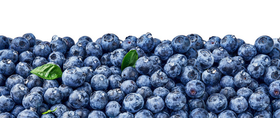 Fresh blueberry background. Blueberry leaves with berries and drops. Top view. Concept of healthy and dieting eating. Blue texture of blueberries. Fototapete