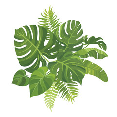 Tropical green leaves bouquet on white background. Palm branches composition. Vector illustration.