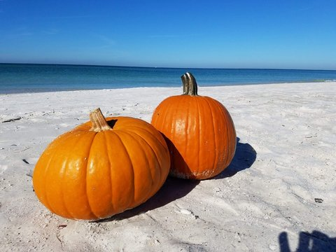 Pumpkins On Beach Against Clear Sky