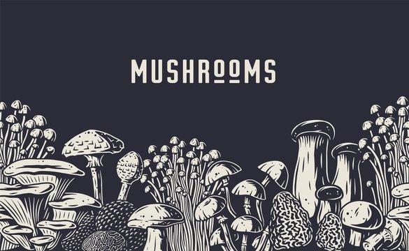 Autumn forest mushroom picking, vegan menu pattern