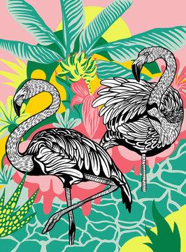 Illustration of flamingos