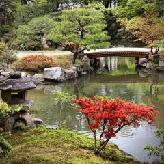 Wall Mural - Isuien Garden, Nara. Japanese landmarks.