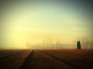 Foto auf Gartenposter Gelb Schwefelsäure Narrow Road Along Landscape