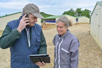Veterinary and female farmer analysing the growth of the chicken breeding on a tablet while he is phoning to  his office