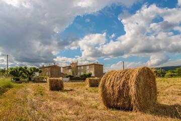 Abgeerntetes Getreidefeld in der Provence