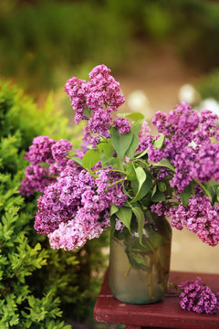 bouquet of lilacs in the bank. Romance