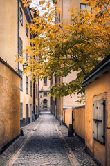 Foto auf AluDibond Stockholm Empty Alley Amidst Buildings In City