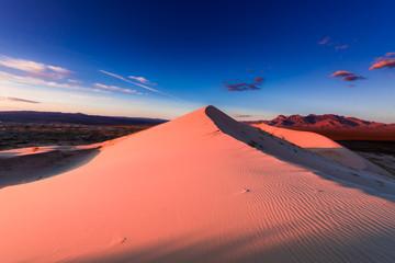 Foto auf Gartenposter Koralle Kelso dune at sunet
