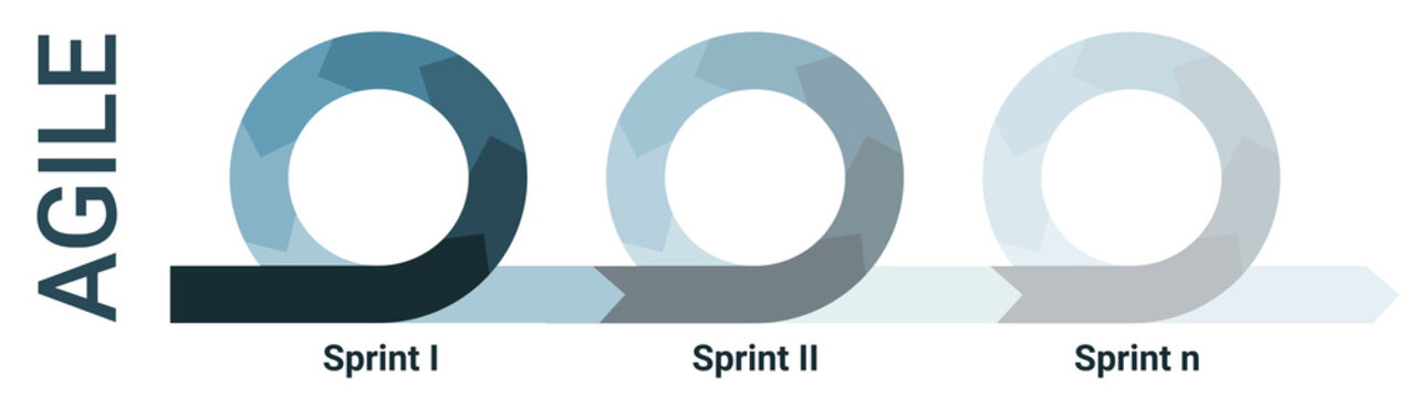 Agile lifecycle development process diagram, software developers sprints infographic