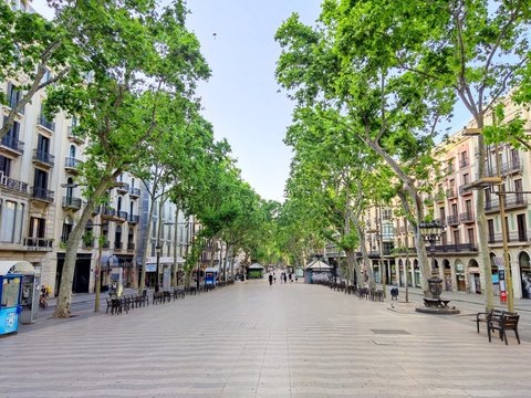 Las Ramblas de Barcelona the centre of the Catalan capital. Catalonia, Spain