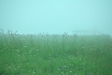 Foto auf AluDibond Licht blau Countryside Landscape Against Clear Sky