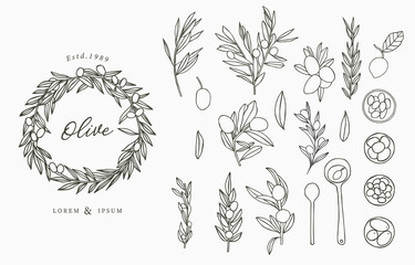 Black Olive logo collection with leaves.Vector illustration for icon,logo,sticker,printable and tattoo