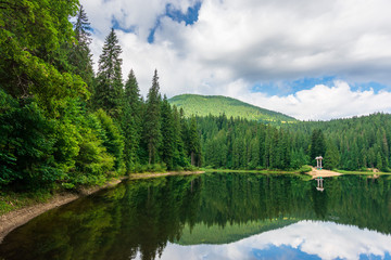 scenery with forest reflecting in the lake. Synevyr National park is a popular destination of Ukrainian Carpathians. clouds above the distant mountain. wonderful summer weather