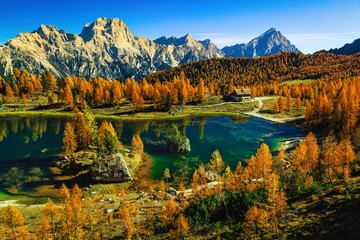 Fototapete - Spectacular Federa lake in the autumn forest, Dolomites, Italy