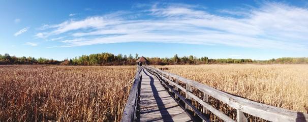 Boardwalk Over Agricultural Field Fototapete