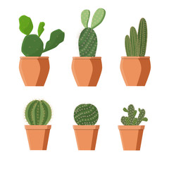 Set of houseplants on a white background, isolate. Cacti in pots, vector