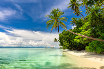 Fotobehang Beige Idillyc landscape of tropical beach - calm ocean, palm trees, blue sky