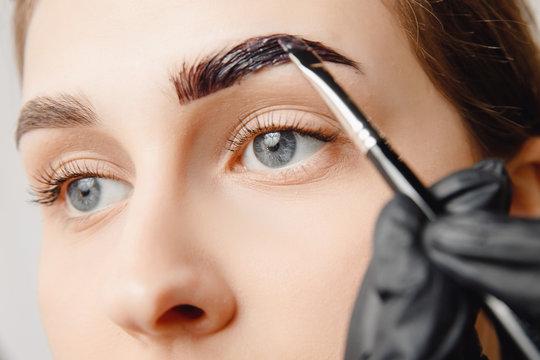 Master brush dye henna eyebrows woman in beauty salon. Correction of brow hair