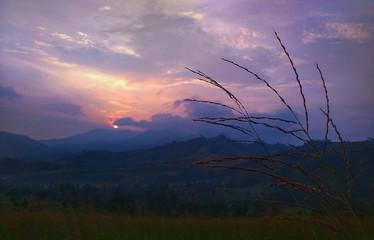 Foto auf AluDibond Lavendel Scenic View Of Landscape At Sunset