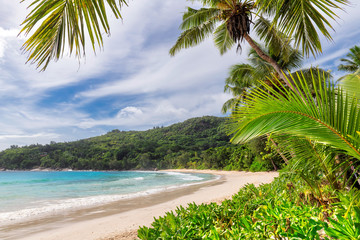 Wall Mural - Sunny beach with white sand, coconut palm trees and turquoise ocean in Seychelles paradise island. Summer vacation and tropical beach concept.