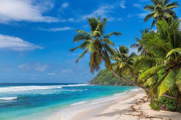 Wall Mural - Tropical sunny paradise beach. Summer vacation and tropical beach concept.