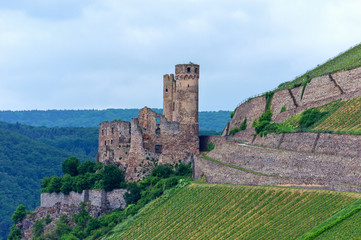 Burgruine Ehrenfels bei Rüdesheim, Deutschland