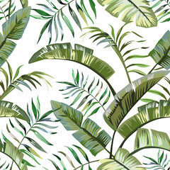 Wall Mural - Tropical leaves seamless white background