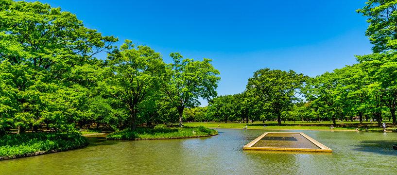 東京 渋谷 代々木公園 ~ Yoyogi Park, one of the largest parks in Tokyo, Japan ~