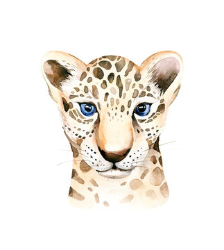 Africa watercolor savanna leopard, animal illustration. African Safari wild cat cute exotic animals face portrait character. Isolated on white poster, invitation design