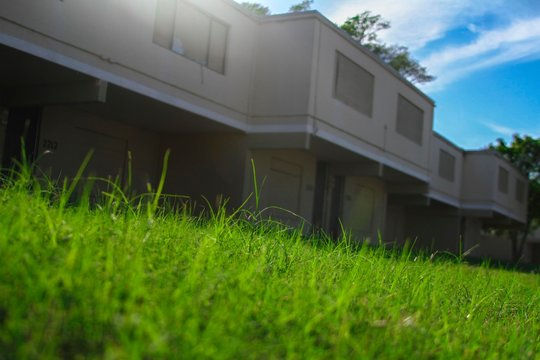 Surface Level Of Lawn Outside Building