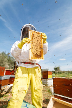 From below male beekeeper in white protective work wear holding honeycomb with bees while collecting honey in apiary