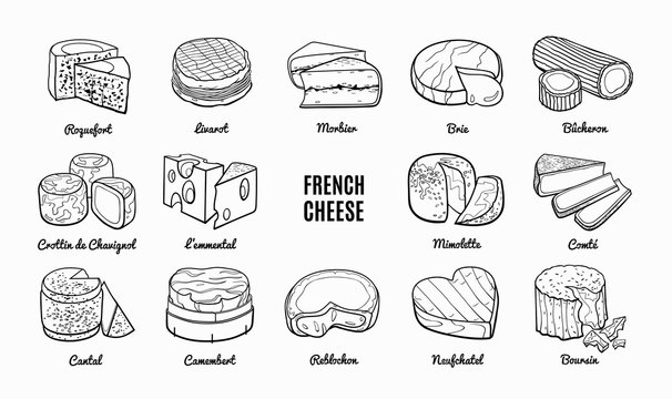 Collection of traditional French cheese. Hand drawn sketch in doodle style.