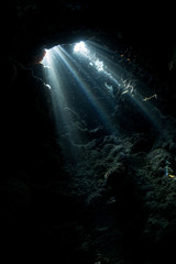 Fototapete - Sunlight filters down into a dark, underwater cavern in Raja Ampat, Indonesia. This remote area is known as the heart of the Coral Triangle due to its high marine biodiversity.