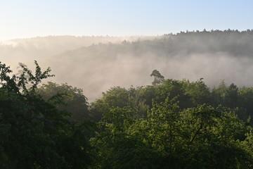 Früh am frostigen eisheiligen Morgen