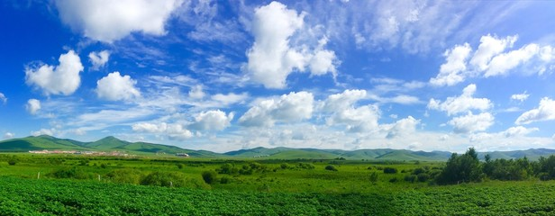 Panoramic View Of Agricultural Field Against Sky Fototapete