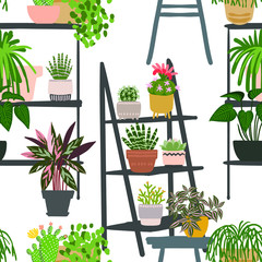Pattern Cacti and succulents. Indoor plants and flowers in pots. Landscaping at home. Decor for the apartment and garden.