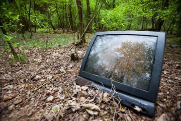 Stary telewizor wyrzucony w lesie.