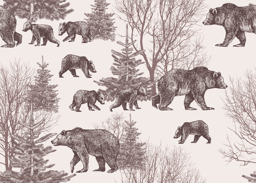 .Landscape with bears, cubs, winter trees and fir trees. Wildlife seamless pattern. Hand drawn vector vintage illustration.