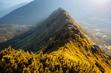 Wall Mural - Beautiful alpine highlands in morning light. Location place Carpathian mountains, Ukraine.