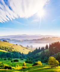 Wall Mural - Captivating scene of the alpine valley in sunlight. Location place Carpathian, Ukraine, Europe.