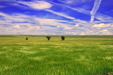 Foto auf AluDibond Dunkelblau Rural Landscape