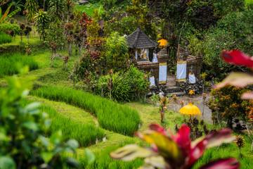 Kleiner Tempel in den Jatiluwih Reisterrassen auf Bali, Indonesien