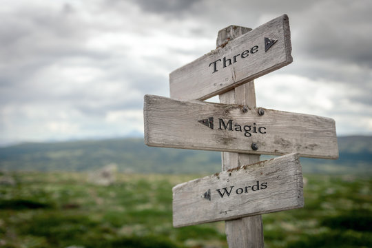 three magic words text engraved on old wooden signpost outdoors in nature. Quotes, words and illustration concept.
