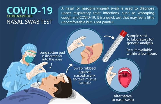A man is swabbed for a Covid-19 test. to speed corona virus testing,a new type of nasal swab. info graphics vector illustration creative.